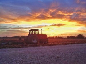 13 most important life lessons I learned from growing up on a farm